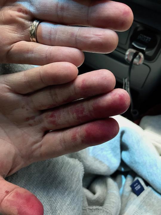 My huckleberry's (husband) hands!